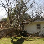 storm damage roofing contractor
